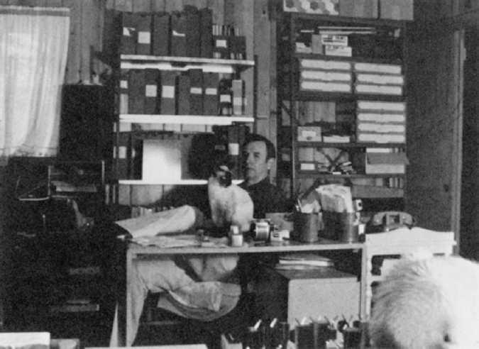 Материал Ра. Закон Единого. Книга 1. В офисе Дон беседует с фотографом Джимом, привлекая внимание кошачьей аудитории. 26 июня 1982 года.