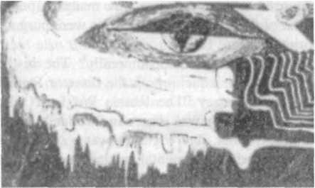 Глаз все-поглощающей змеи